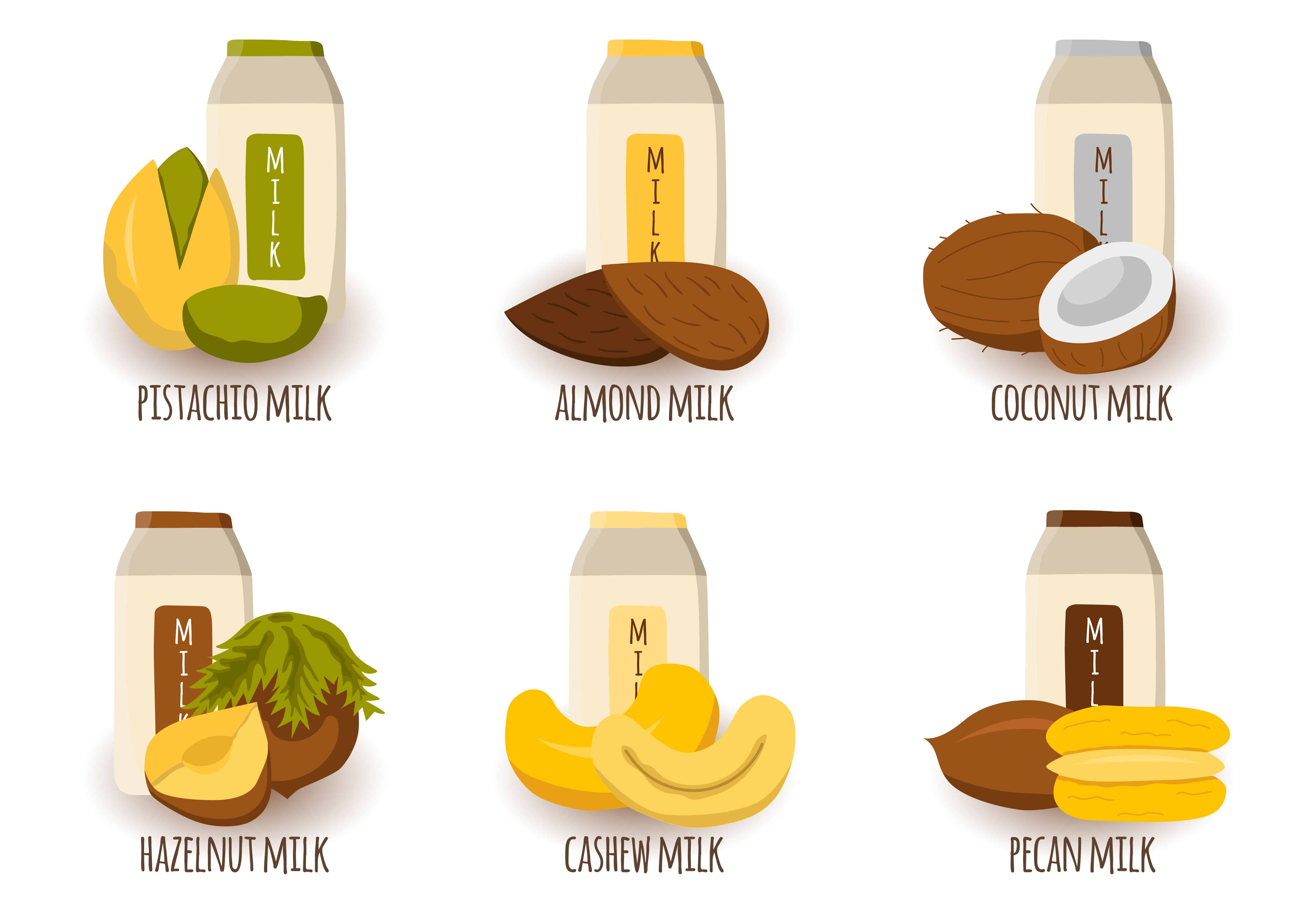 Different types of vegetable milk from nuts and seeds