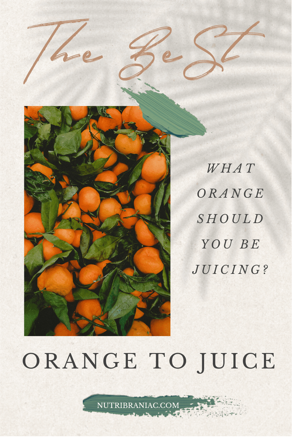 "image of a cluster of oranges with text overlay, ""The Best Orange to Juice: What Oranges Should You be Juicing?"""